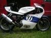 XS650-RGV-Racer