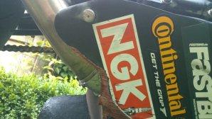 IMG-20140116-WA0001