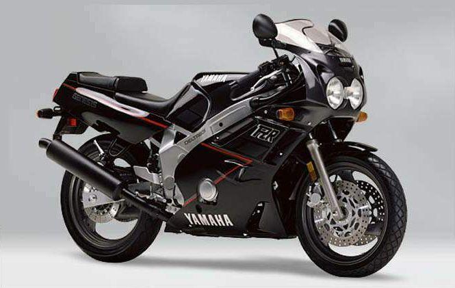 1989 Yamaha FZR600 (Farbvariante 3)